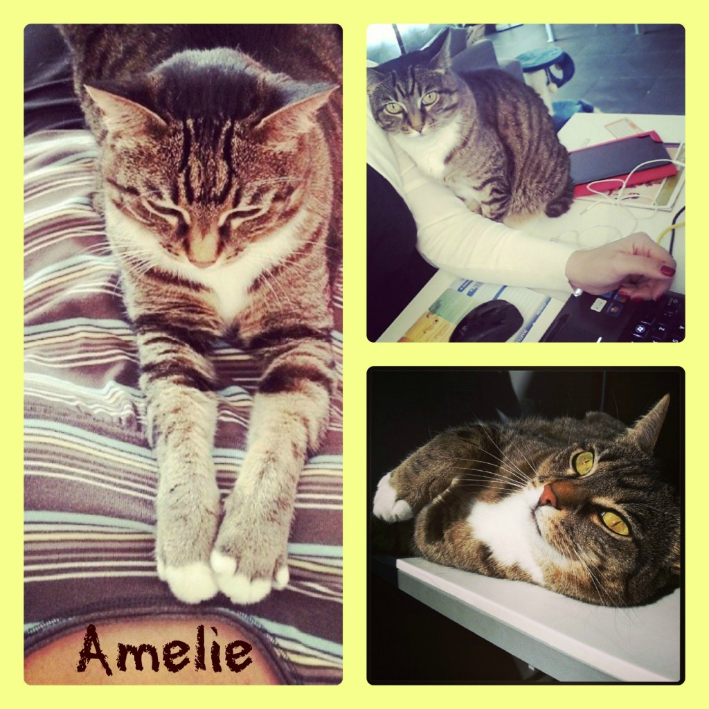 Collage amelie