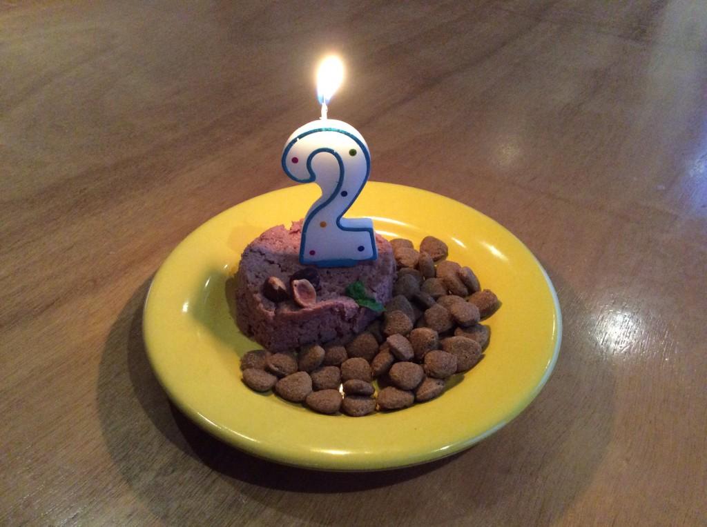 Una Torta Di Compleanno Molto Speciale Per Mic