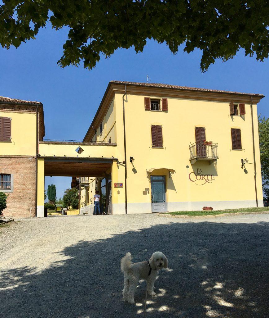 La Corte relais dog friendly nell'Astigiano