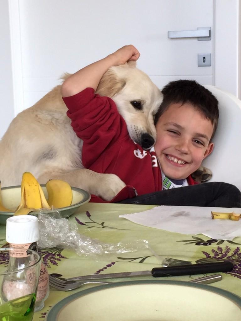 La golden retriever femmina Zoy e Luca: una meravigliosa amicizia in continua crescita!