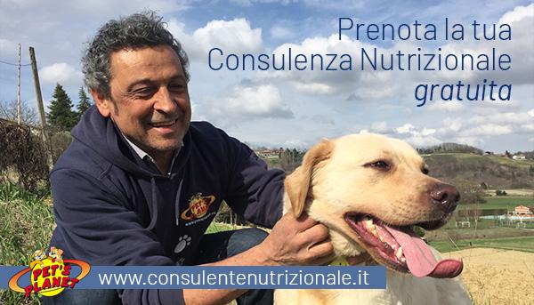 Richiedi la Consulenza Nutrizionale gratuita