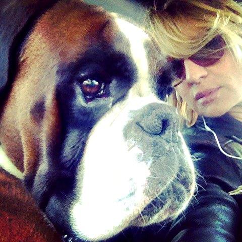 Notizie da Ben, il cane amico di Alessia Marcuzzi!