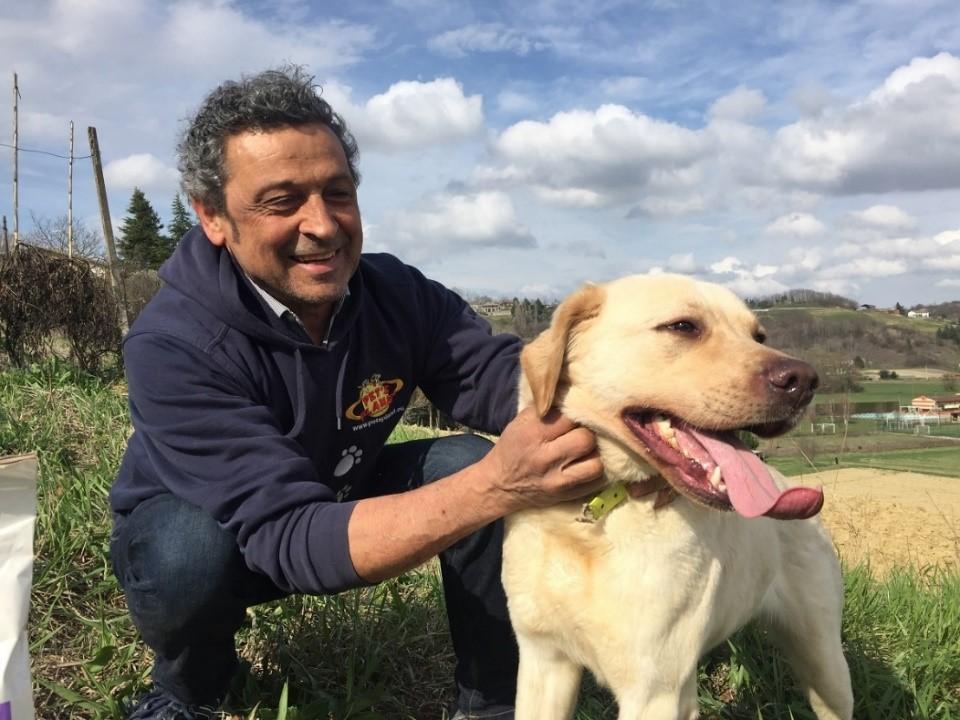 Le Printemps et les changements dans l'alimentation des chiens et des chats
