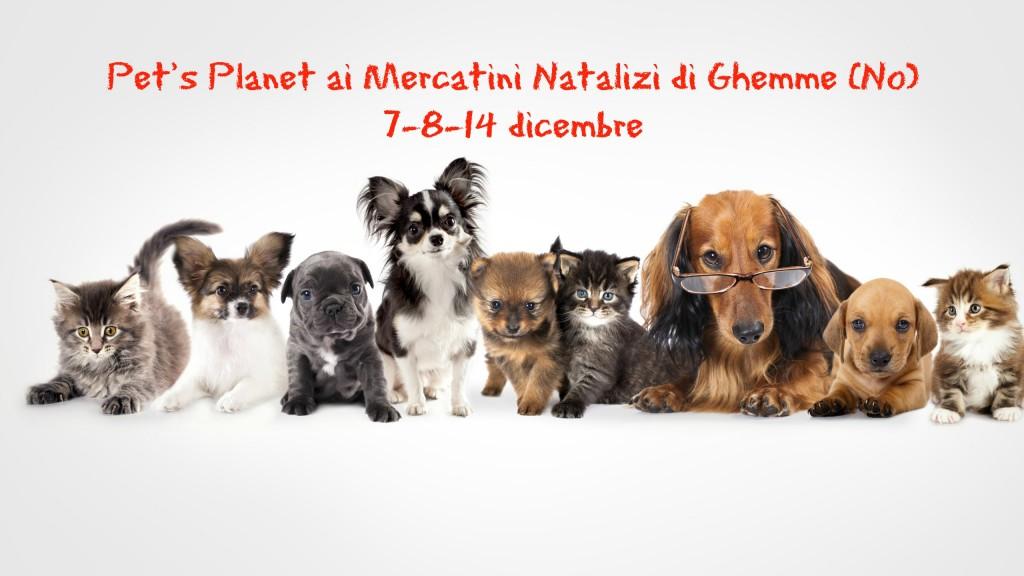 Ai mercatini di Natale di Ghemme (No) vi aspettano i Consulenti Nutrizionali Pet's Planet